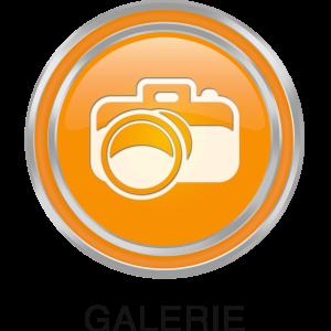 foto -- gallerie ICON